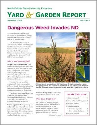 NDSU Yard & Garden Report for September 3, 2018