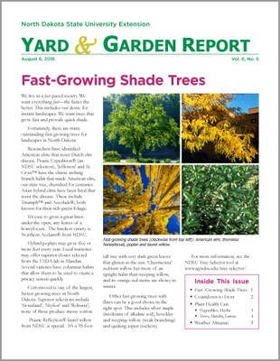 NDSU Yard & Garden Report for August 6, 2018